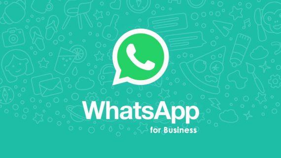 Apa itu WhatsApp Bisnis dan Cara Membuatnya | Creativy